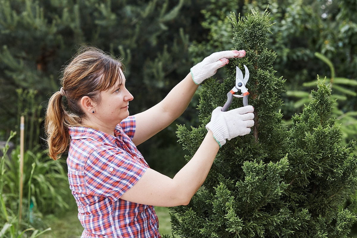 3 Essential Tasks to Clean Up Your Yard This Spring